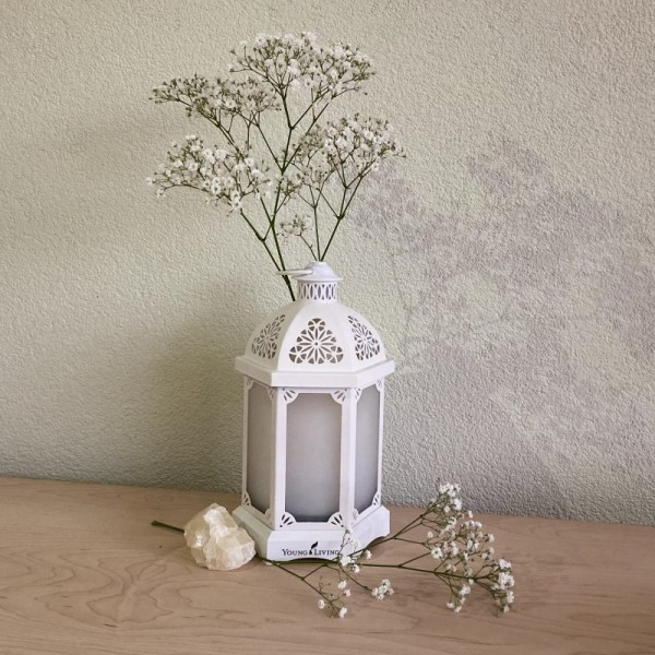 Young living diffuser lantern white oily animals